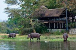 Safari Club Classic Accommodation - Mvuu-Lodge