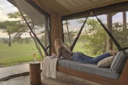 Safari Club Premium Accommodation - Naboisho_Camp