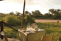 Safari Club Classic Accommodation - Ngala_Tented_Camp_andBeyond