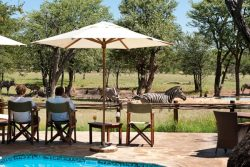 Safari Club Classic Accommodation - Ongava_Tented_Camp_Wilderness_Safari