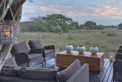 Safari Club Premium Accommodation - Phinda_Forest_Lodge_andBeyond