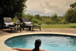 Safari Club Classic Accommodation - Savanna_Private_Game_Reserve