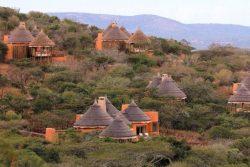 Safari Club Premium Accommodation - Thanda_Safari_Lodge