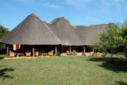 Safari Club Entry Accommodation - Thornicroft_Lodge