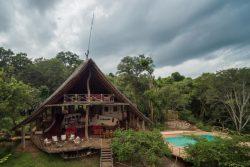 Safari Club Premium Accommodation - Tongole-Wilderness-Lodge