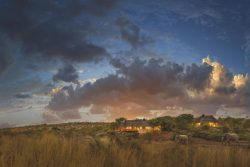 Safari Holidays & Tours - Tuningi Safari Lodge