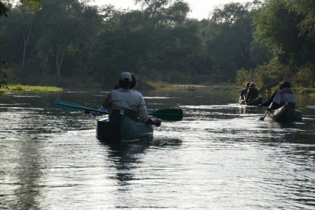 Canoeing patrol Lower Zambezi