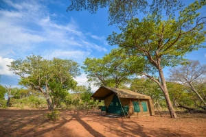 Safari Club - jcs-tent2