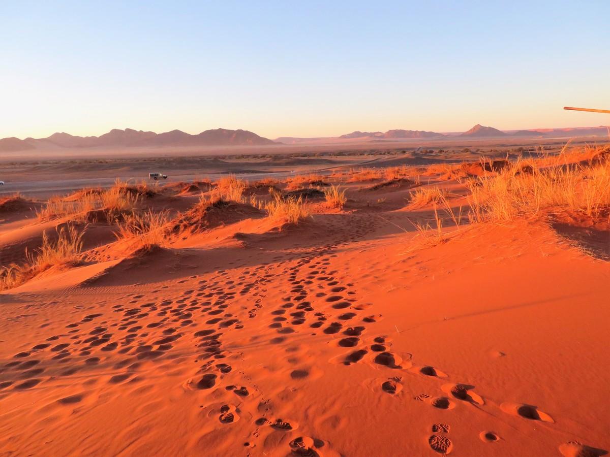 Red Dunes of Namib Desert