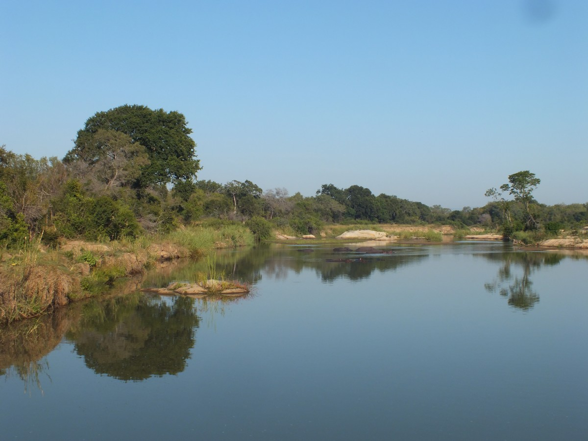 Reflective water Limpopo