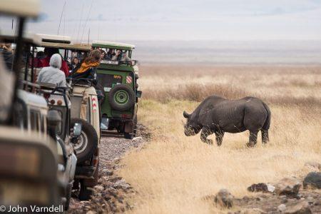 Rhino came close in Ngorongoro Crater