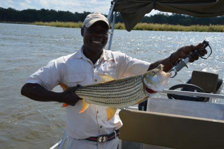 Tiger fishing Lower Zambezi